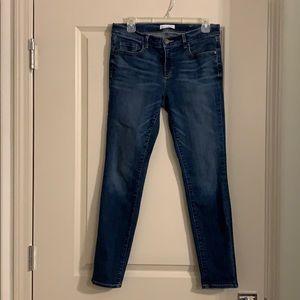 Loft Jeans (waist 29/size 8)